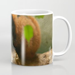 Sleeping Monkey Photography Print Coffee Mug
