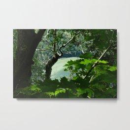 Willoughby Lake Metal Print