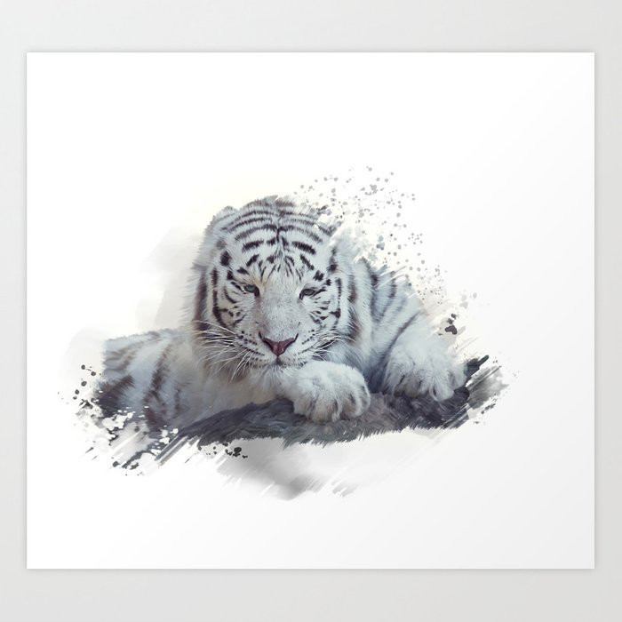 White tiger watercolor painting on white background Art