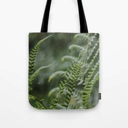 Fern - green plants Utrecht - nature fine art photography Tote Bag