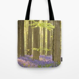 Blooming bluebell forest of Hallerbos in Belgium in morning sunlight Tote Bag