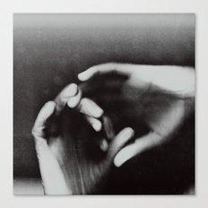 0096 Canvas Print