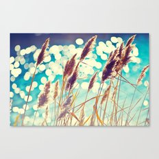 See Spot Run Canvas Print