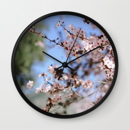 Cherry Blossom Wall Clock