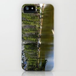 Dreamy View Of Nymph Lake iPhone Case