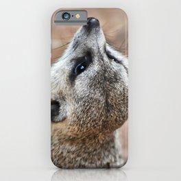 Meerkat looking for eagles iPhone Case