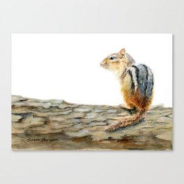 Little Chip - a painting of a Chipmunk by Teresa Thompson Canvas Print
