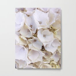 Flowers | Spring | Easter | Nature | Plants | Botanical Photography Metal Print