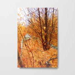 Grounded Metal Print