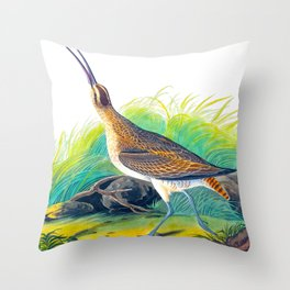 Hudsonian Curlew Throw Pillow