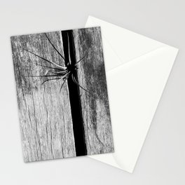 Looking for some light Stationery Cards