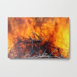 Feuer Metal Print