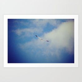 up high Art Print