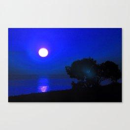 Dawn in the South fourth Canvas Print