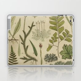 Ferns And Mosses Laptop & iPad Skin