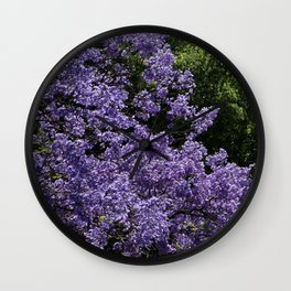 Flowering Jacarada Tree Wall Clock