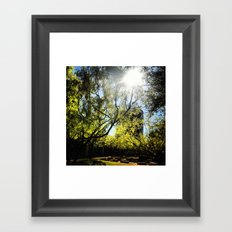 Yavneh Framed Art Print