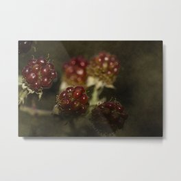 Wild berries #4 Metal Print