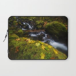 Dividing the Forest Laptop Sleeve