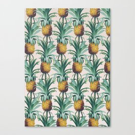 Pineapple Trellis Canvas Print