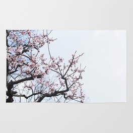 PLUM BLOSSOMS Edition04 Rug