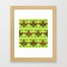 Giant Dead Leaf Mantis (Deroplatys desiccata) pattern Framed Art Print