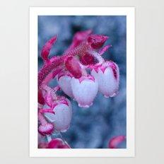 Pink Drops Art Print