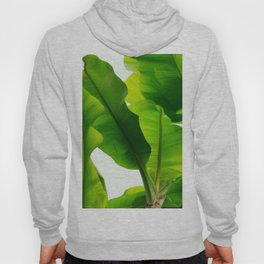 TROPICAL GREEN Hoody