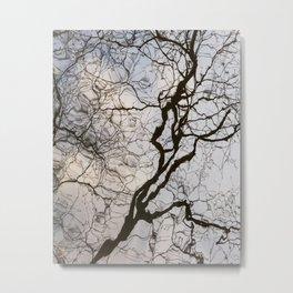 Reflected Tree 3 Metal Print