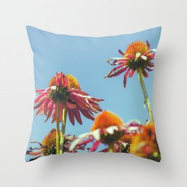 Coneflowers Reaching Skyward Throw Pillow