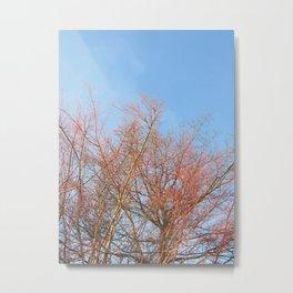 Winter Foliage Metal Print