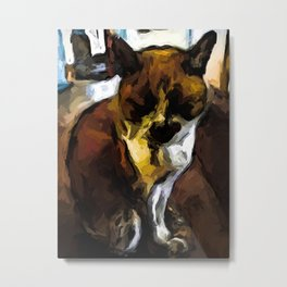 Sleeping Cat of Brown and White with Shadows Metal Print