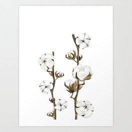 Cotton branches. Art Print