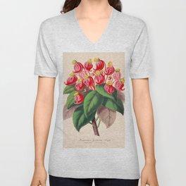Impatiens gordonii Vintage Botanical Floral Flower Plant Scientific Illustration Unisex V-Neck