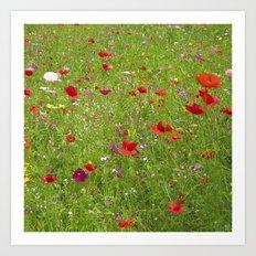 summer meadow IX Art Print