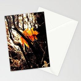 Tree Star Stationery Cards