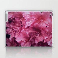 Pink Rhododenrons Laptop & iPad Skin