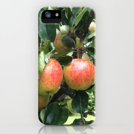 Juan's tree iPhone Case