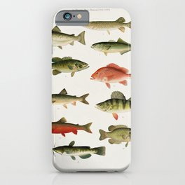 Illustrated North America Game Fish Identification Chart iPhone Case