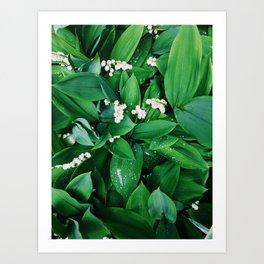 Summer Leaf & Floral Art Print
