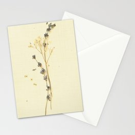 I'm in love Stationery Cards