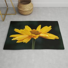 Bright Yellow And Black Rug