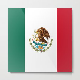 mexican sports fan mexico flag Metal Print