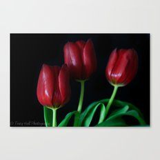 Smooth Tulips  Canvas Print