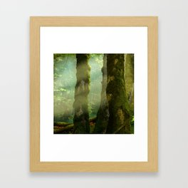 Sunbeams between trees in forest Framed Art Print