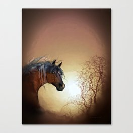 HORSE - Misty Canvas Print