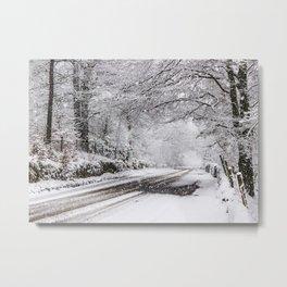 Branby Wood Derbyshire Metal Print