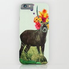 i've been searching for something i've never seen iPhone 6s Slim Case