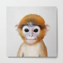 Baby Monkey - Colorful Metal Print