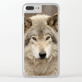 Autumn Timber Wolf Clear iPhone Case